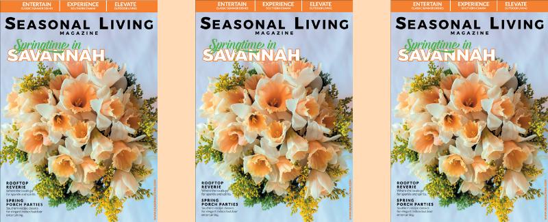 Best Articles on Savannah Georgia